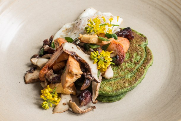 Savory nettle pancakes with dryad saddle, chicken of the woods, and venison bacon