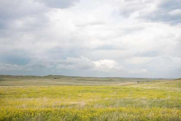 The South Dakota Prairie
