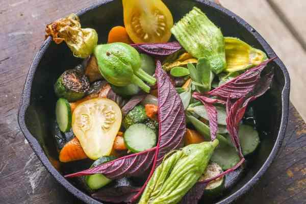 Mixed garden vegetables for a woodchuck stew