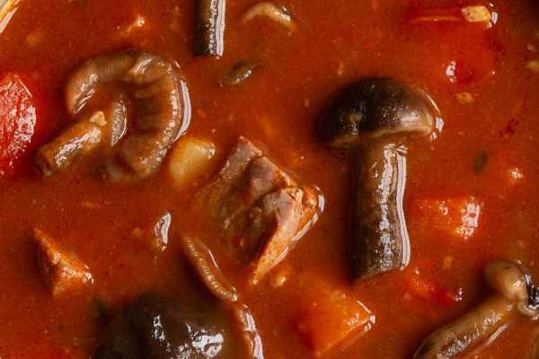 Venison goulash or gulyas with honey mushrooms recipe