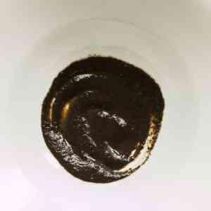 Shaggy mane mushroom ink sauce with pasta recipe