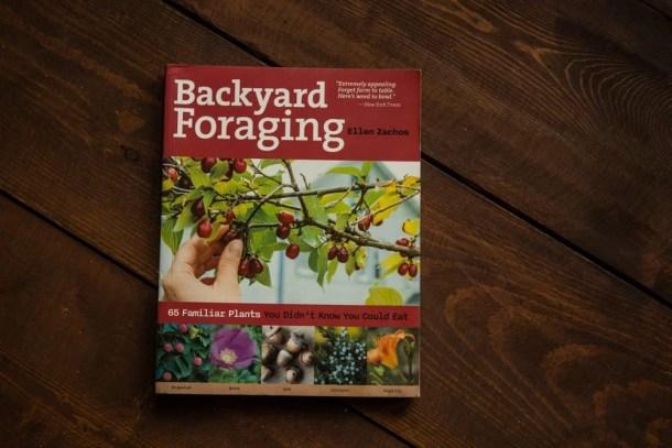 Backyard Foraging by Ellen Zachos
