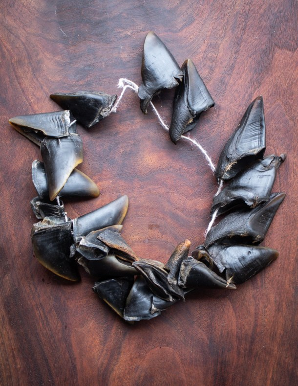 Venison hoof maracas or chajchas on black walnut