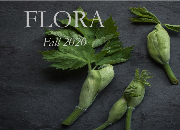 forager chefs book of flora cover