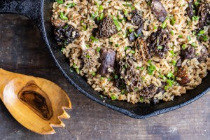 Dried morel and venison rice