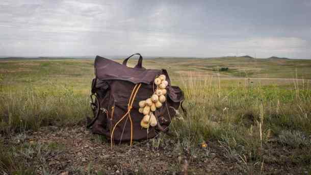 timpsila, prairie turnip,
