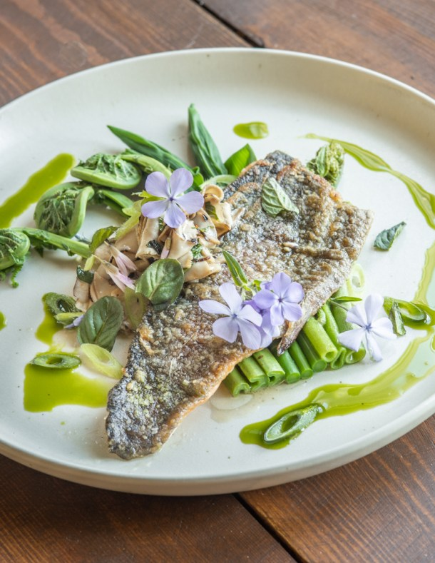 Trout with pheasant back mushrooms, spring shoots and ramp oil