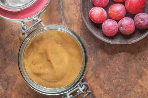 Wild plum ketchup recipe