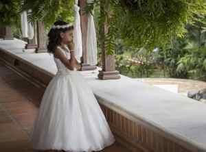 Weddings | Foraggio Phorographic
