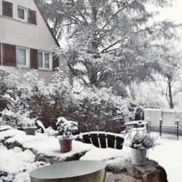 snow forbetterorwurst.com