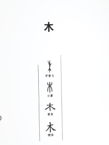old graph for chinese character tree