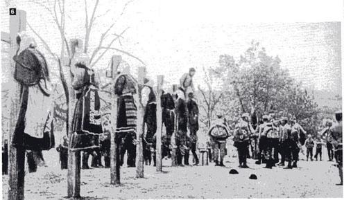 Austrian war crimes in the Balkan