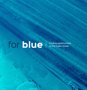 For Blue Phase 1 Report