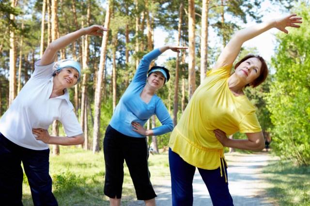 exercicios terceira idade