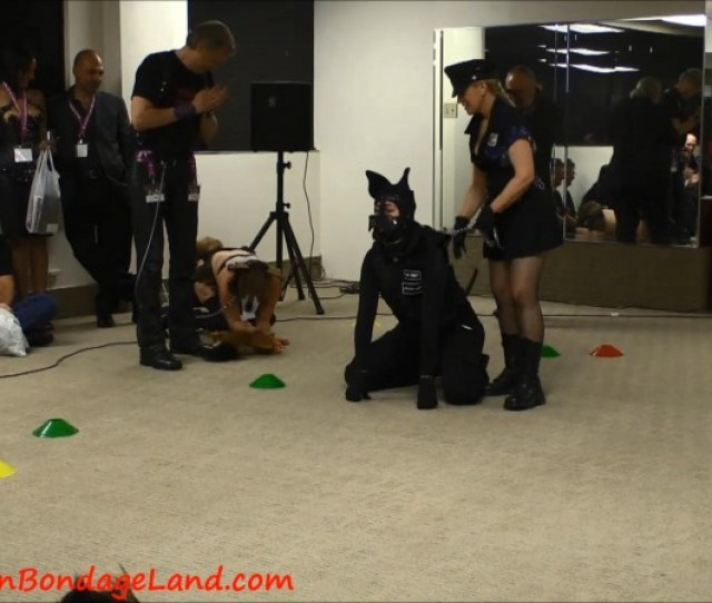 Best In Show Human Pet Show Domcon Los Angeles  Femdom Bdsm Convention