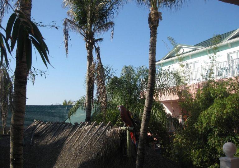 PORT CHARLOTTE, PUNTA GORDA , FLORIDA LOT/ LAND , ADJACENT LOT  FOR SALE ALSO ! 3