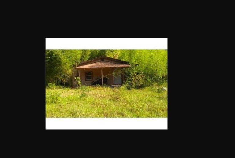 No Reserve! Residential Land for Sale w/2 Poss Homes/Houses Arkansas Real Estate 3