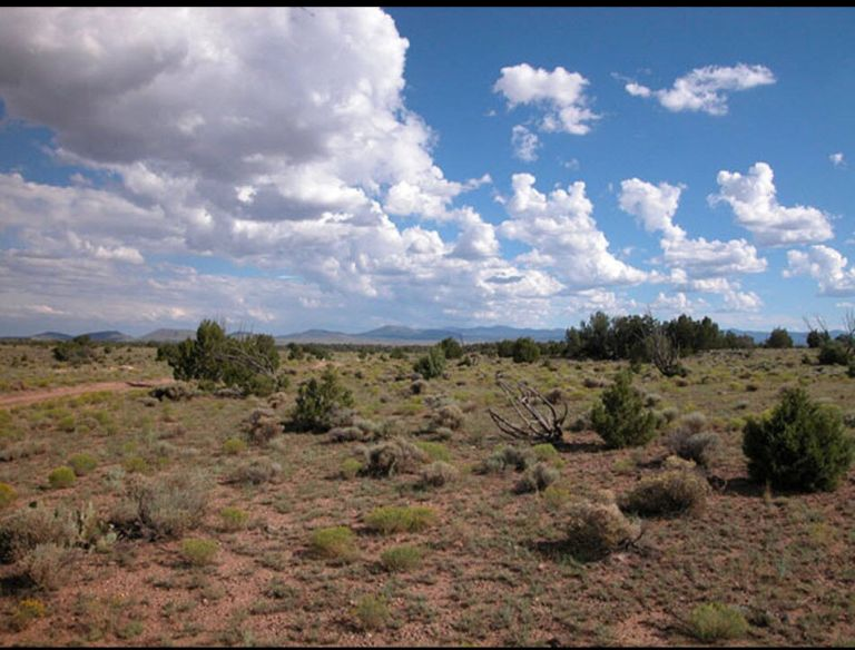 Vacant land for sale by owner Williams Arizona  1 acre $2,500 4