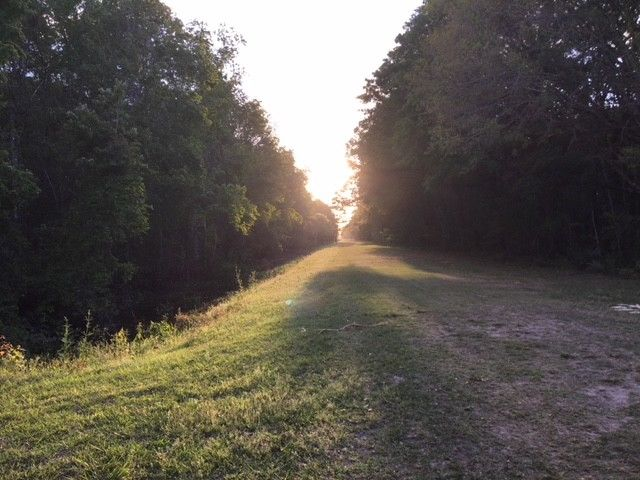 Real Estate - Hastings, FL - 1.14 Acre Lot 1