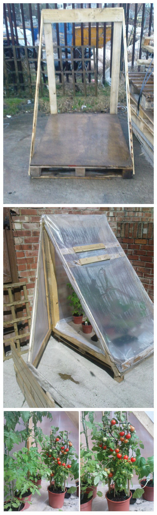 DIY Greenhouse from Pallet.