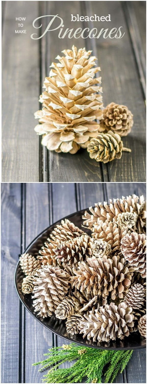 Gorgeous Bleached Pinecones. Give the pine cones a softer, weathered look by bleaching them! Great crafts for your seasonal decor!