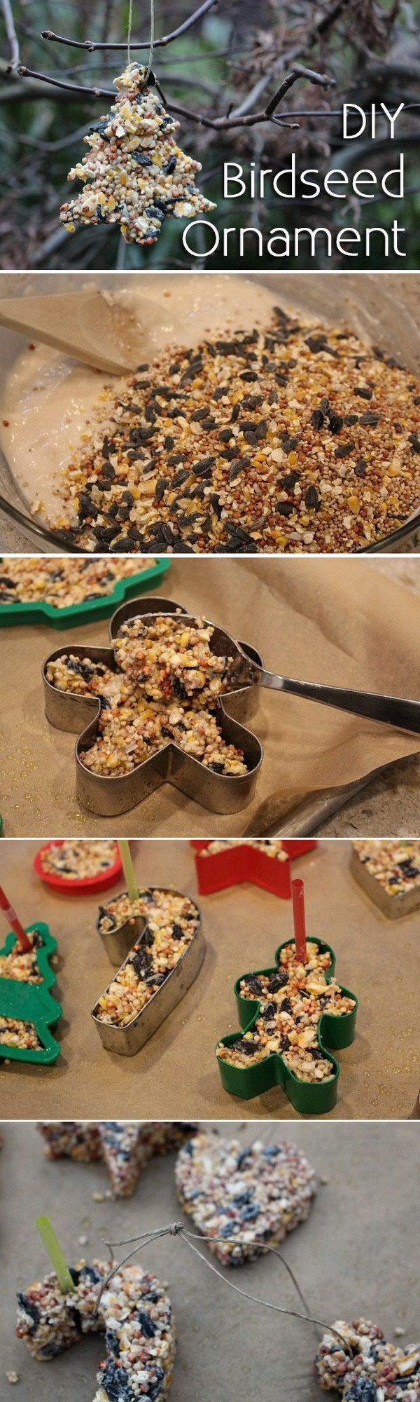 Homemade Birdseed Christmas Ornament. An adorabel craft that your kids will have great fun to make and the birds will enjoy eating them. Easy and Fun DIY Christmas crafts for You and Your Kids to Have Fun.