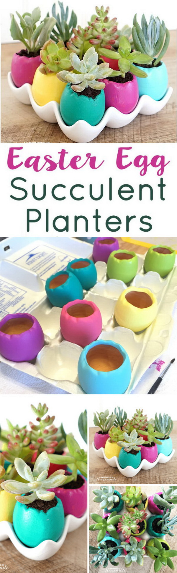 DIY Easter Decoration Ideas: Easter Egg Succulent Planters.
