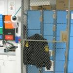 Police Department Wire Panels for Cages