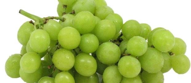 grapes, zucchini availability
