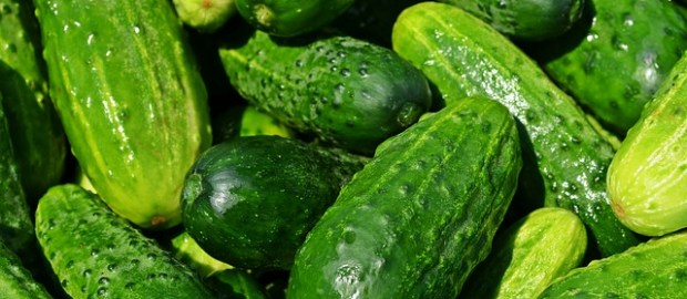 Cucumber markets