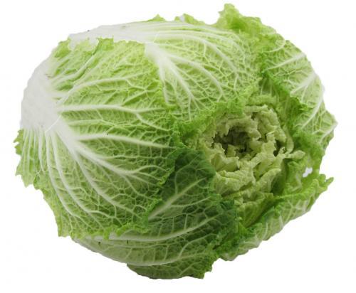 Cabbage, Savoy