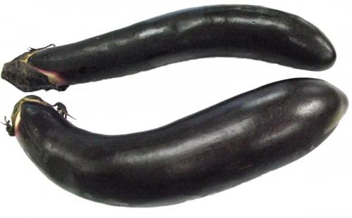 Eggplant, Japanese