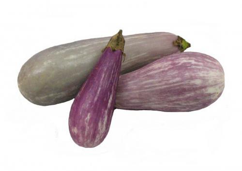 Eggplant, Variety 4
