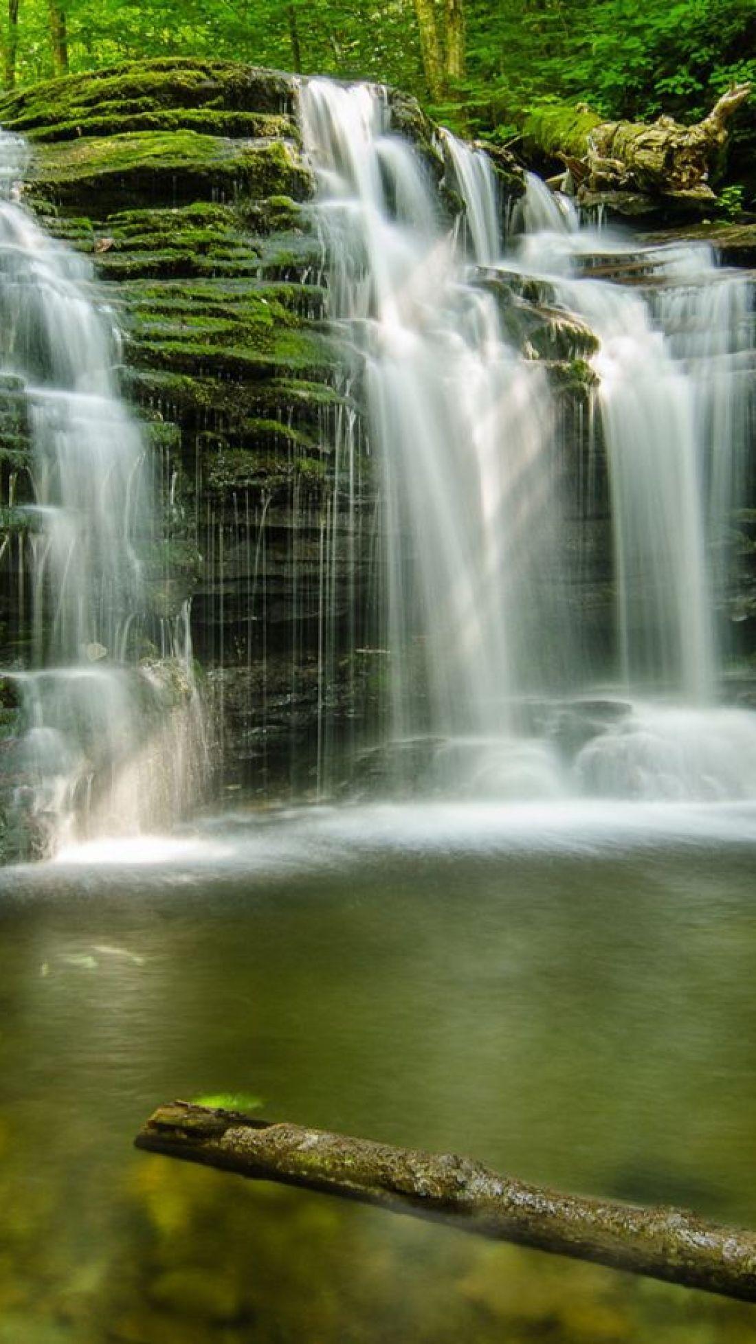 Forest-Green-Waterfalls-1440×2560