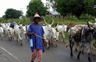 Ruga: Nigerian Fulani Not Homeless - Middle Belt Forum