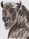 Minotaur (charcoal) - © S. G. Larner