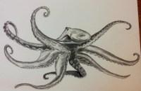 Octopus 2 (charcoal) - © S. G. Larner