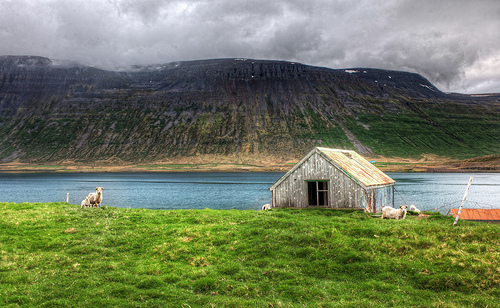 Hut in meadow by lake
