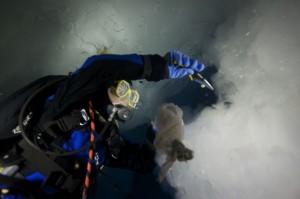 divingunderwater