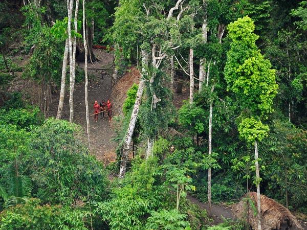 Uncontacted tribes in the Amazon. (c) Gleison Miranda, FUNAI/Survival