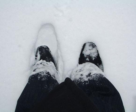 Lunta oli tullut yön aikana ihan mukavasti.