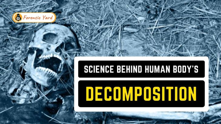 Science Behind Human Body's Decomposition Forensic Yard (9)