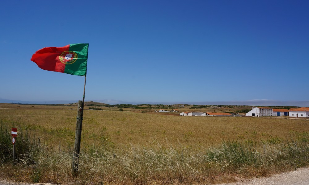 Portugal to build 15 MW biomass plant by 2019