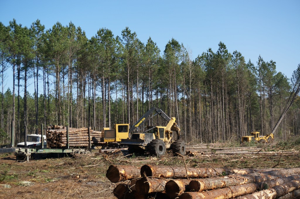 wood supply logging operations
