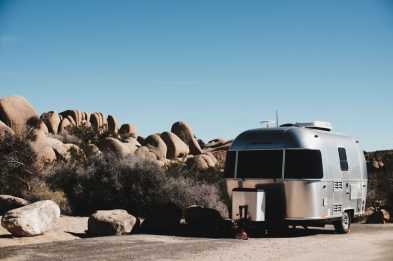 Do Not Let Your Pet Roam Free in a Moving RV - RVing with Pets