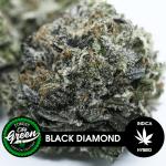 Black Diamond forestcitygreen