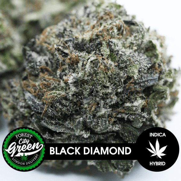 Black Diamond forestcitygreen