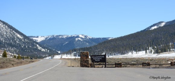 Entering Yellowstone National Park. We cross through the northwest corner of the park.
