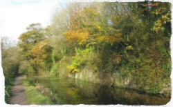 Glamorganshire canal in autumn