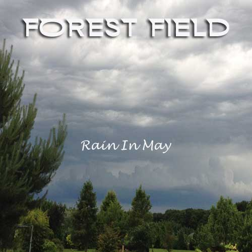 Forest-Field-Rain-In-May